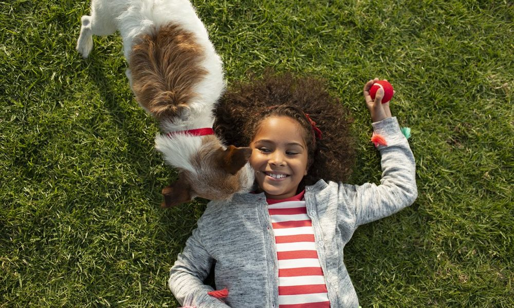 The real science behind your pet's food
