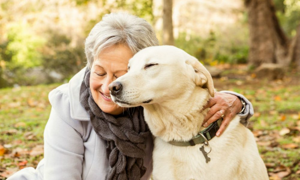 The Pet Boost: Furry Friends Help Seniors Feel Less Lonely