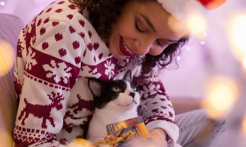 5 Vet Tips for a Happy and Healthy Holiday Season with your Pets