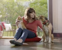 Expert tips for maintaining your pet's healthy weight