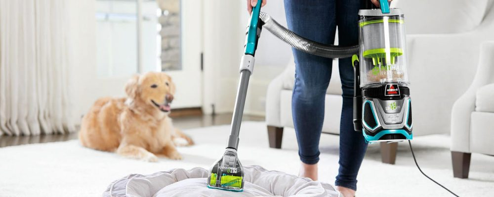 5 tips to get in front of the pet hair in your home