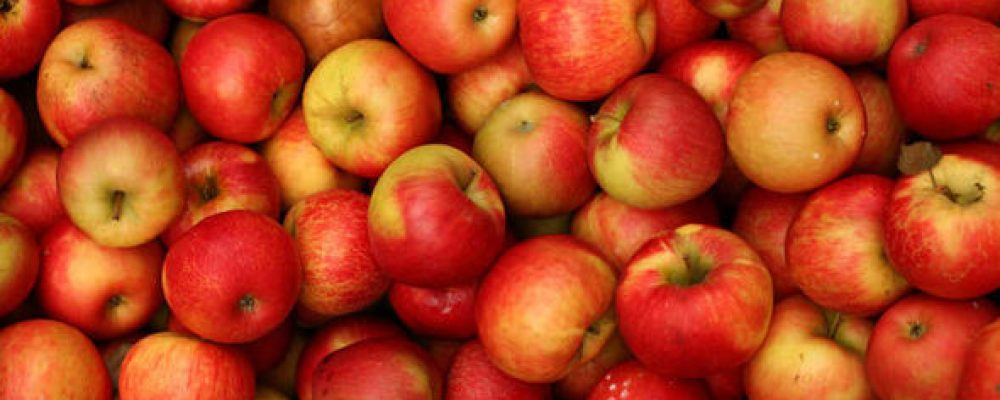 Crunchy, crispy, juicy: 5 warm comfort foods featuring apples