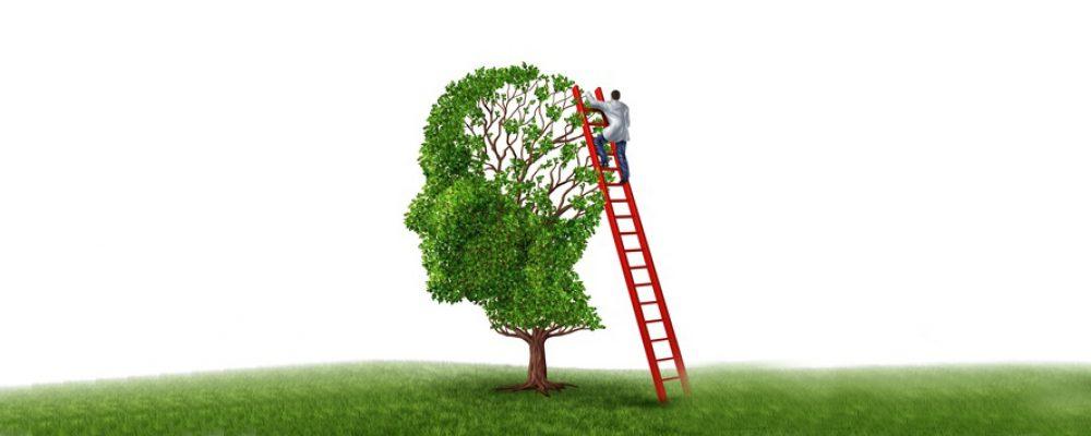 Brain Injury Rehabilitation, Treatment and Recovery