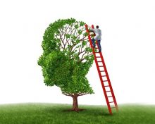 Brain Injury Rehabilitation, Treatment and Recovery